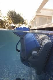 Best Swimming Pool Cleaner 92 Best Dolphin Pool Cleaner Images On Pinterest Dolphins