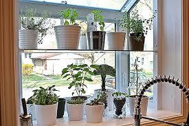 kitchen garden window ideas garden design garden design with kitchen window design ideas
