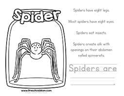 color u0026 learn bug worksheets