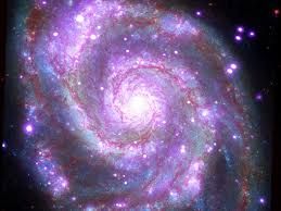 whirlpool galaxy nasa whirlpool galaxy picture from 4 images business insider