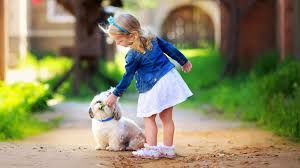 cute baby puppy wallpaper hd wallpapers