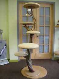 large cat trees foter