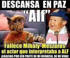 Alf Meme - top memes de alf en español memedroid
