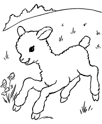sheep coloring lezardufeu