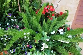 flower planter ideas unique flower planters ideas