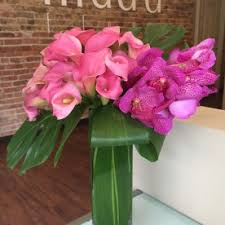flower delivery chicago calla lilies flower delivery in chicago send calla lilies
