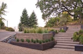 Tall Grass Landscaping by Landscaping Hillside Ideas Landscape Modern With Concrete Planter