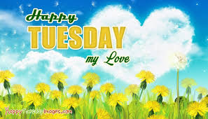 happy tuesday flowers for you happytuesdayimages com
