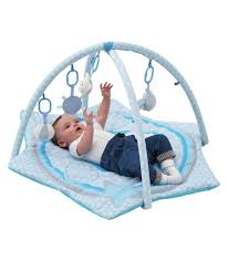 Baby Bath Chair Argos Buy Chad Valley Baby Deluxe Play Gym Blue Puppy At Argos Co Uk