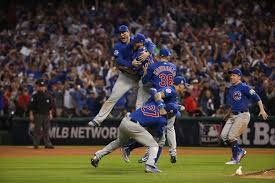 best cubs photos from 2016 chicago tribune