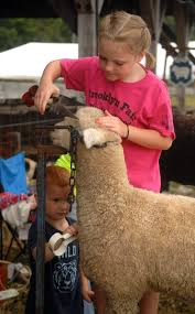 livestock showing is family affair at brooklyn fair news the