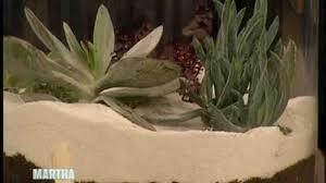 video how to make an indoor garden part 2 martha stewart