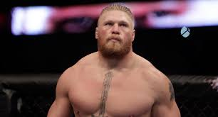 if there was ever a way to make brock lesnar look stupid wwe