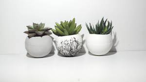 cactus home decor round planter concrete planter small planters air plant