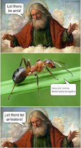 Anteater Meme - meme let there be anteaters oc fairytail