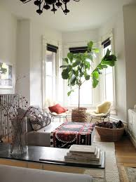 indoor trees feng shui plants feng shui interior design