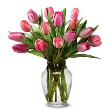 tulip bouquets perfetta pink tulips bouquet at send flowers