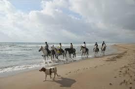 chambre d hote equitation réservation randonnée cheval chambre d hôtes andalousie espagne