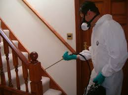 house pest control home pest control dustbusters house cleaning services lebanon