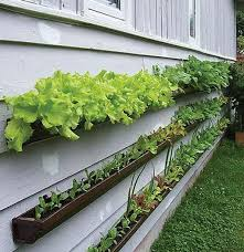 Home Depot Plastic Planters by Wall Planters Brown Plastic Gutters From Home Depot Drill
