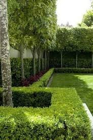 651 best green wall images on artificial hedges