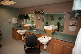 salon sink for home long term care skilled nursing rehabilitation services