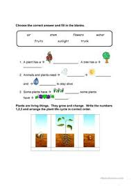 37 free esl plant worksheets