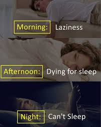 I Cant Sleep Meme - dopl3r com memes morning laziness afternoon dying for sleep
