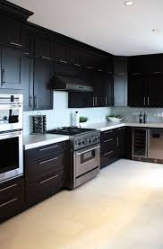 Maple Cabinet Kitchen 22 Best Kitchen Images On Pinterest Home Kitchen Cabinets And