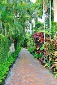 Tropical Landscape Design by 392 Best Tropical Landscaping Ideas Images On Pinterest Tropical