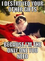Christmas Funny Meme - 20 funniest merry christmas memes sayingimages com