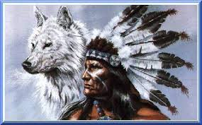 the wolf clan the indian wolf tails