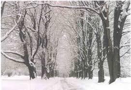 winter images 36 wujinshike