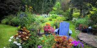 Home Garden Decor Ideas Home Gardening Advice How To Create A Beautiful Yard