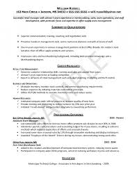 examples of entry level it resumes resume template example