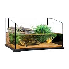 Aquarium For Home by Fish Tank Unforgettable Semi Aquatic Turtle Tank Setup Photo