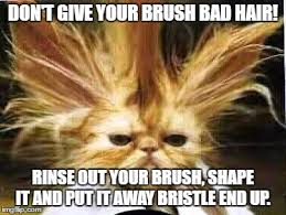 Bad Hair Day Meme - bad hair day memes imgflip