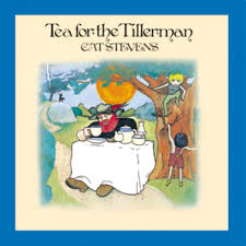 cat photo album cat tea for the tillerman 500 greatest albums of all
