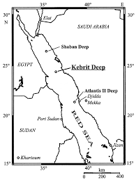 The Red Sea Map Microbial Diversity Of The Brine Seawater Interface Of The Kebrit