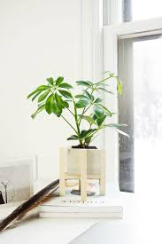 Large White Planter by Plant Stand Planter With Wood Stand Case Study Ceramic