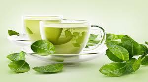 Teh Putih ini loh khasiat teh putih seruni id