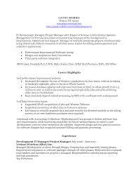 Information Technology Development Project Manager in Dallas TX       information technology resume happytom co