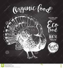 organic thanksgiving turkey vector turkey chalkboard stock vector image 78254672