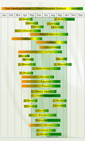 herb growing chart zone 6 vegetable planting calendar vegetable planting calendar