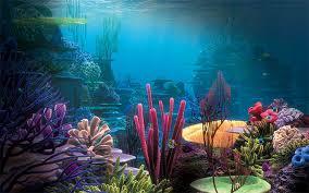 Dramatic Aquascapes Aquarium Backgrounds Fish Tanks
