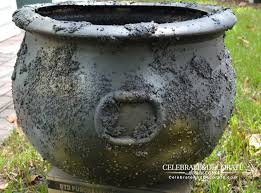 what is brewing with this creepy cauldron celebrate u0026 decorate