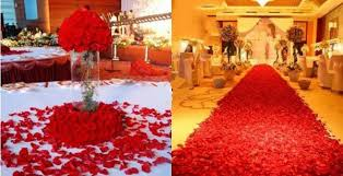where can i buy petals 1000 wine silk petals artificial flower wedding