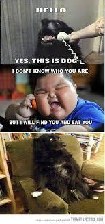 fat asian baby meme 100 images fat asian jokes kappit lu hao 卢