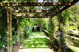 Plants For Pergolas by 25 Garden Trellises And Pergolas Perfect For Summer Relaxation