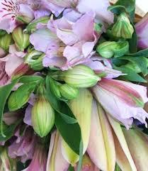 wedding flowers toowoomba the organic florist toowoomba send flowers toowoomba same day